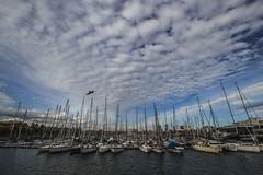 al porto (leti:::::::) Tags: porto barche avela volo mare sea water travel boat cielo nuvole azzurro sky
