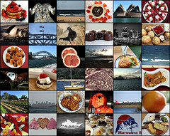 2017 February photos collage (dominotic) Tags: 2017 february february2017photocollage food fruit lolly circle round candy licoriceallsorts bird pigeon valentinesday hearts coffee chinesenewyearsydney scones whippedcream strawberries pancakes chocolate sydneyoperahouse sydneyharbourbridge circularquay maroubrabeach clovellybeach madelines biscuit grapefruit redcabbage burgerwithchips maroubraseals cheeseplate fruitpizza acrefarmeatery fairybread boat yacht sydneyskyline qantasplane yumcha lollies sweets sydney australia collage
