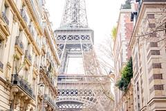 Rue de l'Université (like / want / need) Tags: paris march spring printemps 7eme eiffeltower toureiffel latoureiffel eiffel haussmann