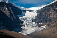 Glacier (Seb & Jen) Tags: rocheuses rockies alberta canada glacier icefield parkway