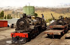 Kingston Flyer. NZR 778 (Bernard Spragg) Tags: kingstonflyernzr778 trains railways steamengines locomotive rails sony