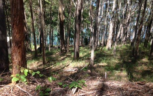 Lot 29, 23 New Forster Rd, Smiths Lake NSW 2428