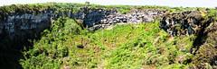 sinkhole - santa cruz island, galápagos (Russell Scott Images) Tags: santacruzisland galápagos equador sinkholes losgemelos twincraters