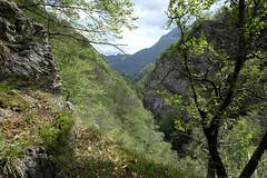 Val Senagra (MoJo_3016) Tags: menaggio comersee lakecomo lario lombardei provinzcomo sanagra menas provincecomo lombardy northernitaly senagra menàas provinciadicomo lombardia lombardie italie lacdecôme