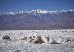 Salt Crystals at Badwater, Death Valley (swissukue) Tags: deathvalley california badwater salt crystals saltlake usa sonya7ii flickrclickx