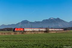 ÖBB 1116 081 mit EC 112 (TheKnaeggebrot) Tags: db öbb ec 112 eurocity ec112 siemens taurus 1116 1116081 weisham kbs951