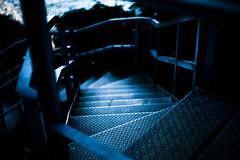 to the sea (N.sino) Tags: m9 summiluxm50mm steps sea sarushima yokosuka 猿島 横須賀 階段 東京湾 鉄板 うねり