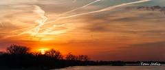 Sandhill_Cranes_Sunset_PLatte_8-1 (Tom Jodis) Tags: sunset sandhillcranes platteriver nebraska migration