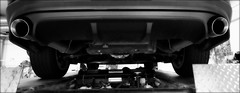 Annual inspection. (Papa Razzi1) Tags: 9086 2017 119365 ford mustang gtcs steeda boss302 trim edit streetlegal finally musclecar 2011