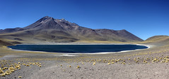 Lago Miscante Chile (Tom Kilroy) Tags: mountain nature volcano landscape scenics travel lake volcaniclandscape outdoors altiplano lava andes desert blue sky summer mountainrange tourism chile miscante atacamadesert