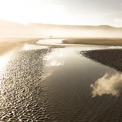 La grève (Matthieu Jolivet) Tags: sable sand plage beach saintmichelengrève bretagne france brittany maréebasse brouillard brume mist eau water mer sea manche cheval horse
