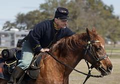 Fort Monroe Civil War encampment Virginia Hampton (watts_photos) Tags: fort monroe civil war encampment virginia hampton horse military union reenactment camp