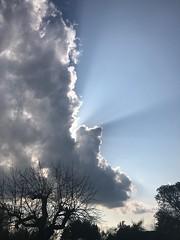 Shining (Rene_1985) Tags: strahlen flares sonne sun himmel sky plus 7 iphone 28mm