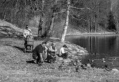 Springtime Idyll (bjorbrei) Tags: spring springtime water shore river family idyll frysja kjelsås akerselva oslo norway