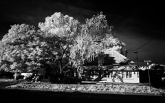 Longreach Home (Bass Photography) Tags: queensland australia longreach home house infrared tree streets outback