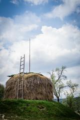 Arilje, Serbia (Sasha Popovic | Photography) Tags: nature serbia westserbia arilje