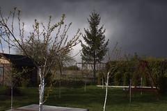 April 37 degrees west (maciej.zdun) Tags: april spring clouds rain sun light cold warm trees zdun maciej obrazki