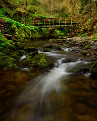 Reelig Glen (Gavin MacRae) Tags: reelig reeligglen reeliggrotto reeligglenforestwalk reeligbridge moniackburn kirkhill beauly inverness highlandsofscotland highlandnature scottishnature scottishglens scottishglen longexposure waterlongexposure highlands woodland nature nikon scotland