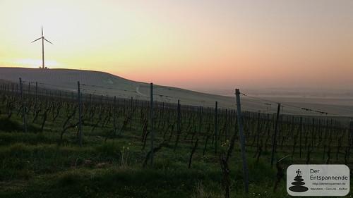 Morgendämmerung über dem Selztal
