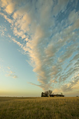 Cloud as Smoke Stack (thefisch1) Tags: could country home horizon prairie kansas sky cirrus cumulo isolated lonely nikon