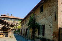 Val Trebbia_  -103705 (diegocurioso) Tags: aziendavinicola vino outdoor fuji xt10 xf18f2 sole alberi ombra edifici antichi casolare