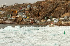 Ice in The Battery (Karen_Chappell) Tags: ice nfld harbour stjohns thebattery atlanticcanada atlantic seascape scenery scenic landscape newfoundland canada spring packice seaice avalonpeninsula eastcoast houses homes coast coastline