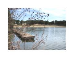 Le Ponton (MOINELE) Tags: eau etang lac ponton plage arbre paysage