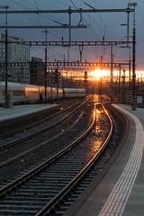 Abfahrt (Claude Schildknecht) Tags: bahnhof couchédesoleil europe gare hauptbahnhof places sonnenuntergang station suisse sunset zurich zurichhb zürich