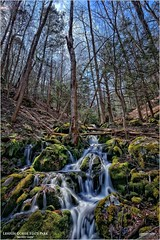 Lehigh Gorge State Park PA - Mossy Glen (Tom Wildoner) Tags: tomwildoner leisurelyscientistcom leisurelyscientist lehighgorgestatepark pennsylvania nature water waterfalls waterfall trees moss mossy glen flowing lgsp canon canon6d april 2017 outdoors biking hiking green hdr