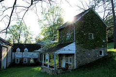 a spring evening at Stirlings (Jen_Vee) Tags: stirlings valleyforge parks trees sun sunburst green springtime seasons flowers grass house shed vines leaves historic