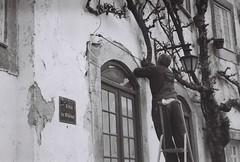 CNV000037 (carolinadossantos) Tags: leica z2x kodak trix analog film 35mm black white portugal óbidos village man tree outdoor