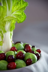 Whimsical Refrigerator Still Life (The Good Brat) Tags: whimsical stilllife refrigerator cabbage brusselssprouts cranberries food kitchen green red