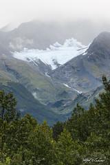 In the Pocket_20A6296 (Alfred J. Lockwood Photography) Tags: alfredjlockwood nature landscape mountain chugachnationalforest glacier richardsonhighway valdez alaska summer overcast morning