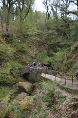 Aira Force waterfall in the Lake District (kitmasterbloke) Tags: aira force ullswater lakedistrict cumbria england outdoor river chasm torrent water waterfall