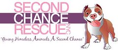 SECOND CHANCE (dflmanagement) Tags: dog cat pet animal rescue adopt shelter homeless