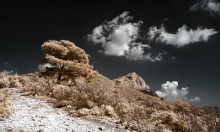 Cézanne's Mountain