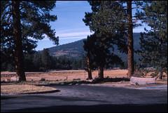 Mount Shasta View (Fotorob) Tags: analoog verenigdestaten california unitedstates montague