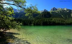 Scorci (- Crupi Giorgio (official)) Tags: italy trentino lake landscape trees mountain walk water relax canon canoneos7d sigma sky sigma1020mm