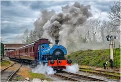 2111. On the 13.25 ............. (Alan Burkwood) Tags: mrc butterley pickett 2111 lythamstannes steamm locomotive vintage coaches semaphore signals mr1910 royaltrain 100yearsold clerestorycoachukstock lms mr midlandrailway lms2795 lms809
