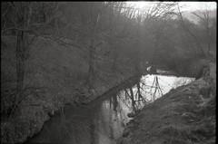 (✞bens▲n) Tags: pentax lx fa 43mm f19 limited film blackandwhite acros100 water trees reflection light japan nagano