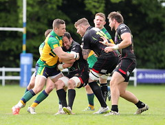 840A0153 (Steve Karpa Photography) Tags: henleyhawks henley rugby rugbyunion game sport competition outdoorsport redruth