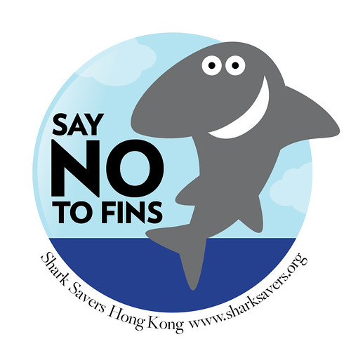 Say No to Fins