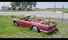 (DavidGuthrie) Tags: old car junk rust michigan farm farmland land