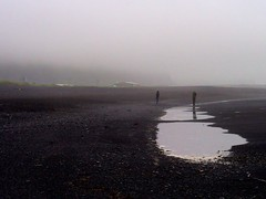 On the beach (bitingmidge) Tags: black beach iceland vik
