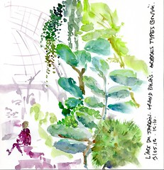 l'art du jardin, Grand palais 2 Paris France (julietteplisson) Tags: aquarelle arbres vegetation croquis grandpalais