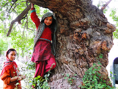 GRACE (Garima J) Tags: india tree nature village god muslim islam happiness grace simplicity ladakh nubravalley 2girls baltistan turtuk 2children sufiyanurbaqshia