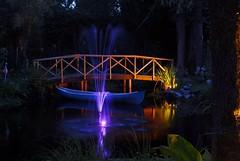 DSC_9632 (2) (RobKramer) Tags: 50mm pond nikon exposure slow nightshot shutter d200 18 nikor