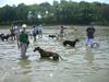 wejuly2010006