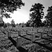3rd Place - Black & White - Kent Owings - Arlington National Cemetery