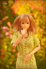 Tomoko (astramaore) Tags: fashion toy doll wind north honey hazeleyes viola momoko